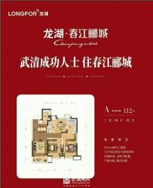 武清龙湖春江郦城户型图
