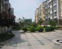 (东蒲洼)城市艺墅4室3厅2卫208m²豪华装修